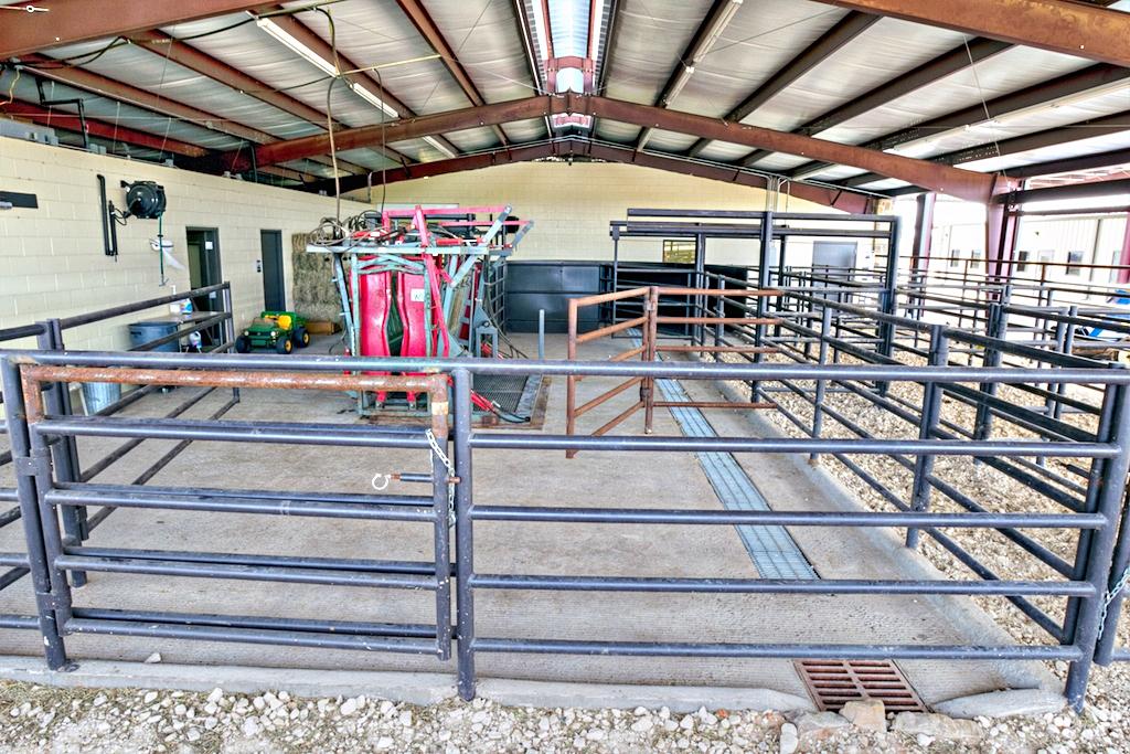 Large Animal Clinic